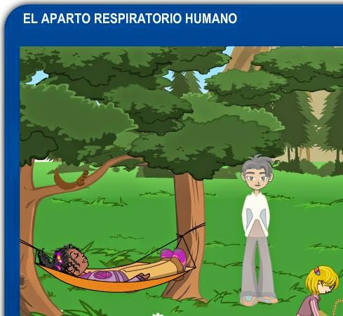 http://www.juntadeandalucia.es/averroes/carambolo/WEB%20JCLIC2/Agrega/Medio/El%20cuerpo%20humano/El%20aparato%20respiratorio/contenido/index.html