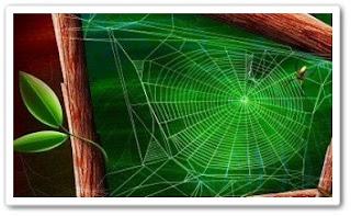 свойства паутины