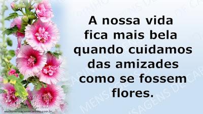 A nossa vida fica mais bela quando cuidamos das amizades como se fossem flores.