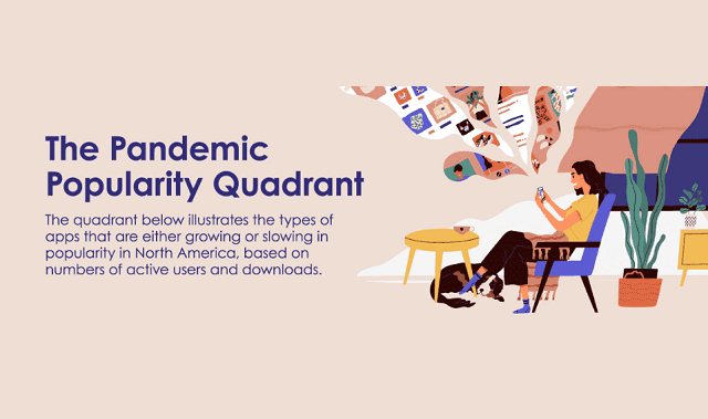 The Pandemic Popularity Quadrant #infographic