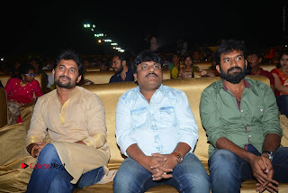 Nenu Local Audio Launch Stills  0176.JPG