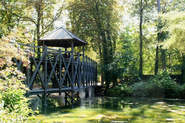 Uno dei ponti ideati da Leonardo e ubicato nel Parco