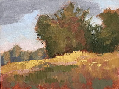 mini painting color study roadside grasses and trees May 24 2019