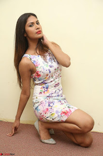 Nishi Ganda stunning cute in Flower Print short dress at Tick Tack Movie Press Meet March 2017 098.JPG