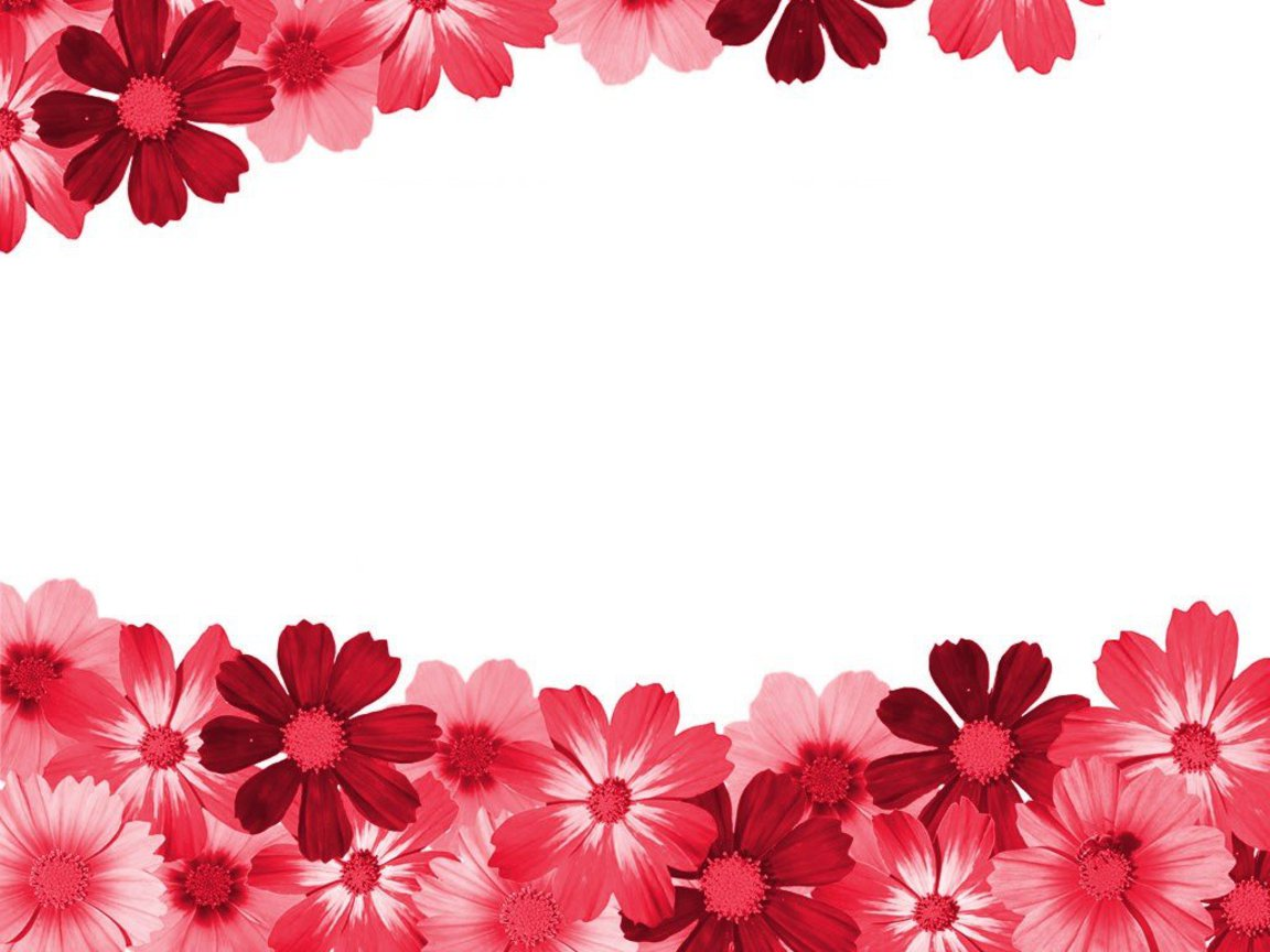 small flower design wallpaper