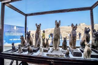 Statues of cats discovered in Giza's Saqqara necropolis