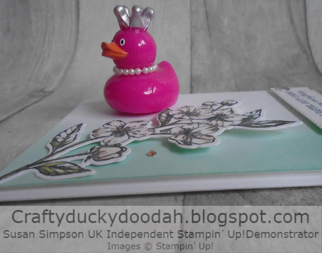 Craftyduckydoodah!, Forever Blossoms, Kre8tors Blog Hop, Spring / Summer 2020, Supplies available 24/7 from my online store, Susan Simpson UK Independent Stampin' Up! Demonstrator