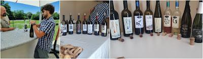 alto canavese piemonte vini
