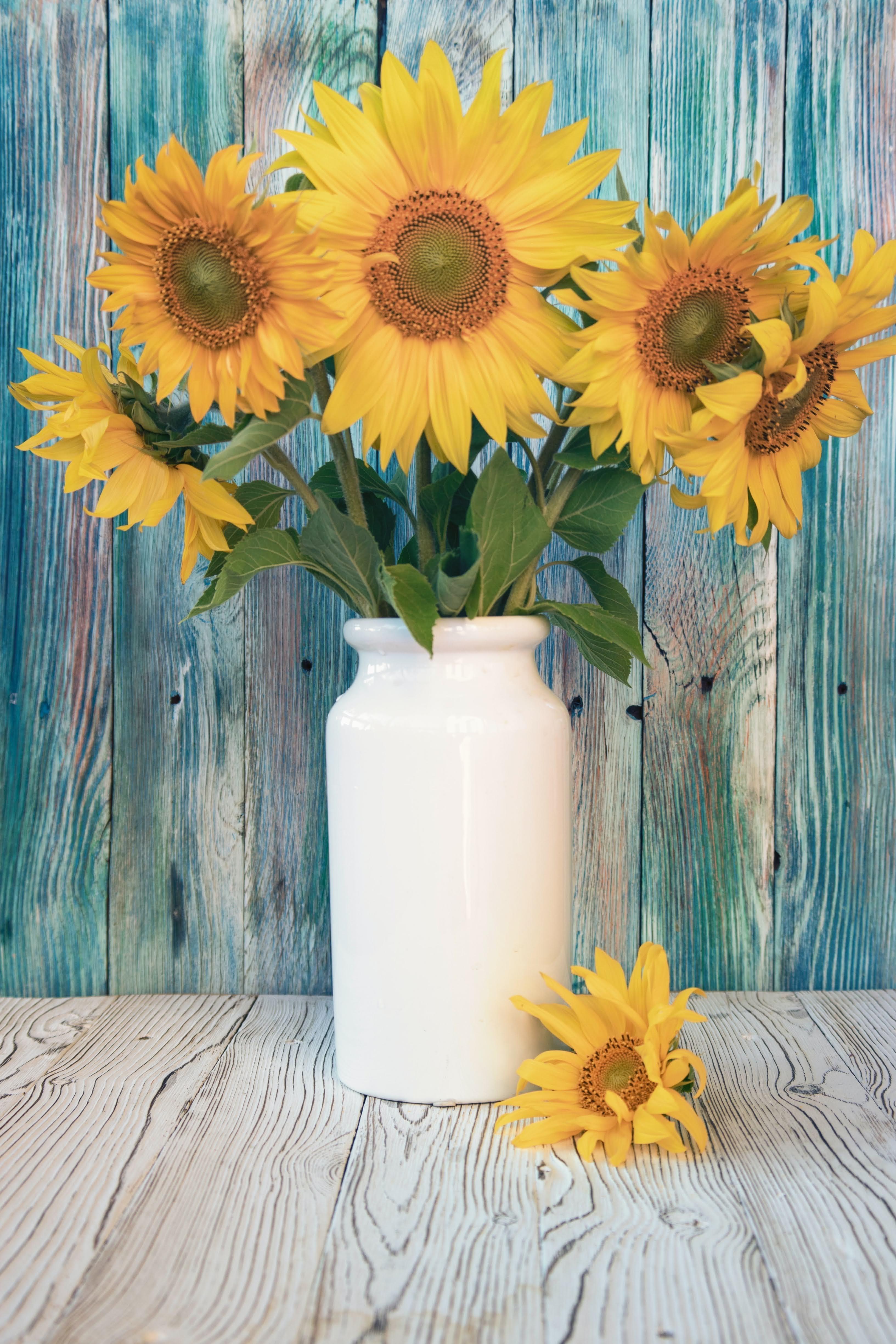 Yellow Sunflowers in White Ceramic Vase   Photo by Andrey Haimin via Unsplash