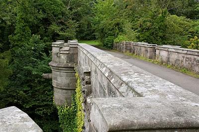 Jembatan Bunuh Diri Anjing