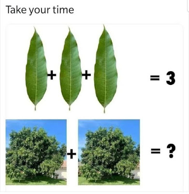 3 Leaves 2 Trees Puzzle answer