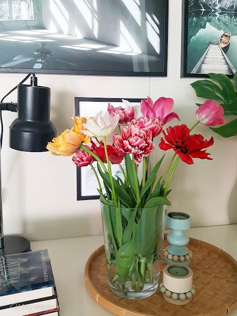 tulppaani tulpaanikimppu kevät oma piha puutarha kukkapenkki sisustus olohuoneen sisustus