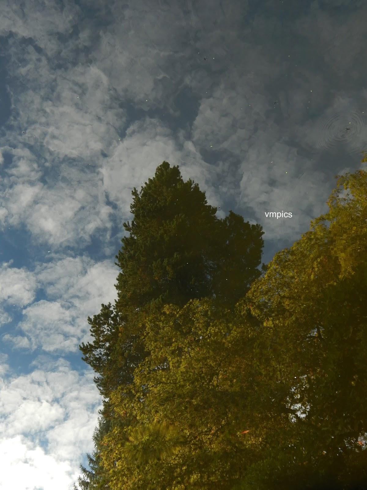 just Words: Hidden Gem of Seattle - Kubota Japanese Garden