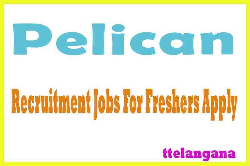 Pelican Recruitment Jobs For Freshers Apply