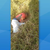 Homem encontrado morto em Biritinga é natural de Serrinha