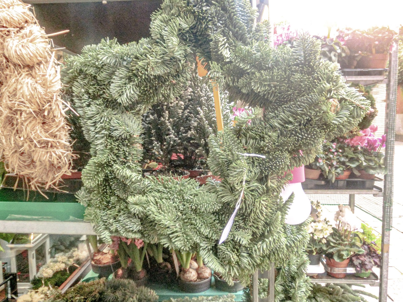 Corone d'Avvento - Floral Advent Design from Venice