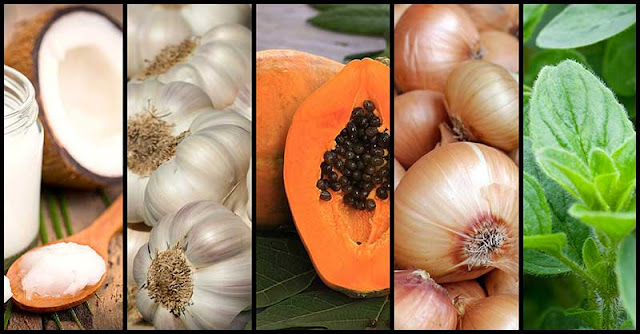 Medicinal Foods That Can Help Prevent Yeast Infections
