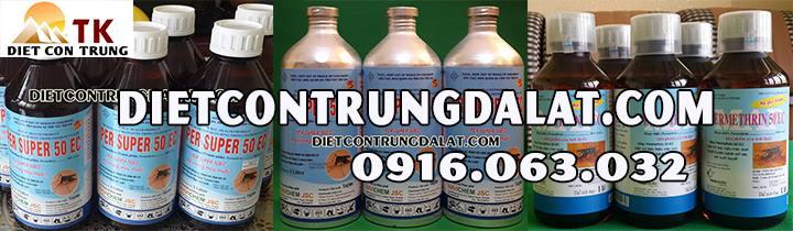 dietcontrungdalat.com
