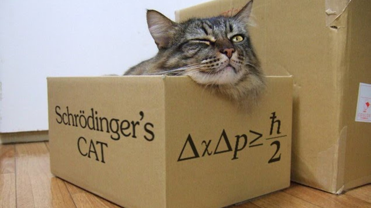 schrodinger cat proof