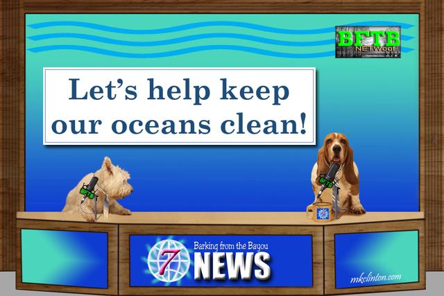 BTFB NETWoof News on ocean