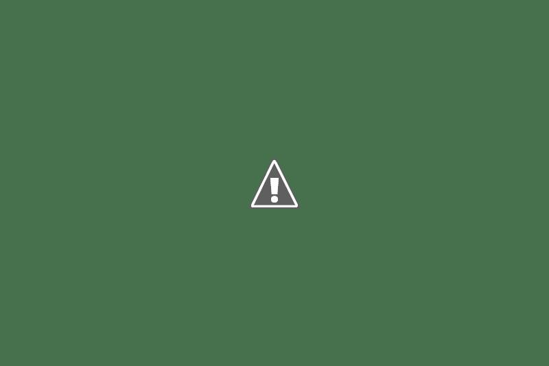 Oller del Mas: el celler d'un castell medieval