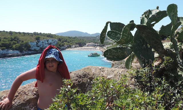 moonfish catamaran playa romantica mallorca