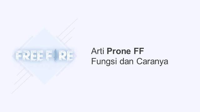 arti prone ff fungsi dan caranya