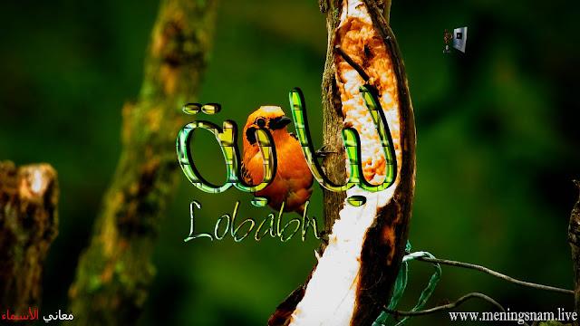 معنى اسم لبابة وصفات حاملة هذا الاسم Lobabh