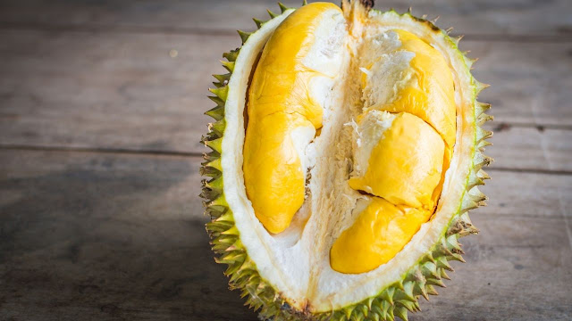 Suitable steps to do if your Golden Retriever eat a lot of Durian