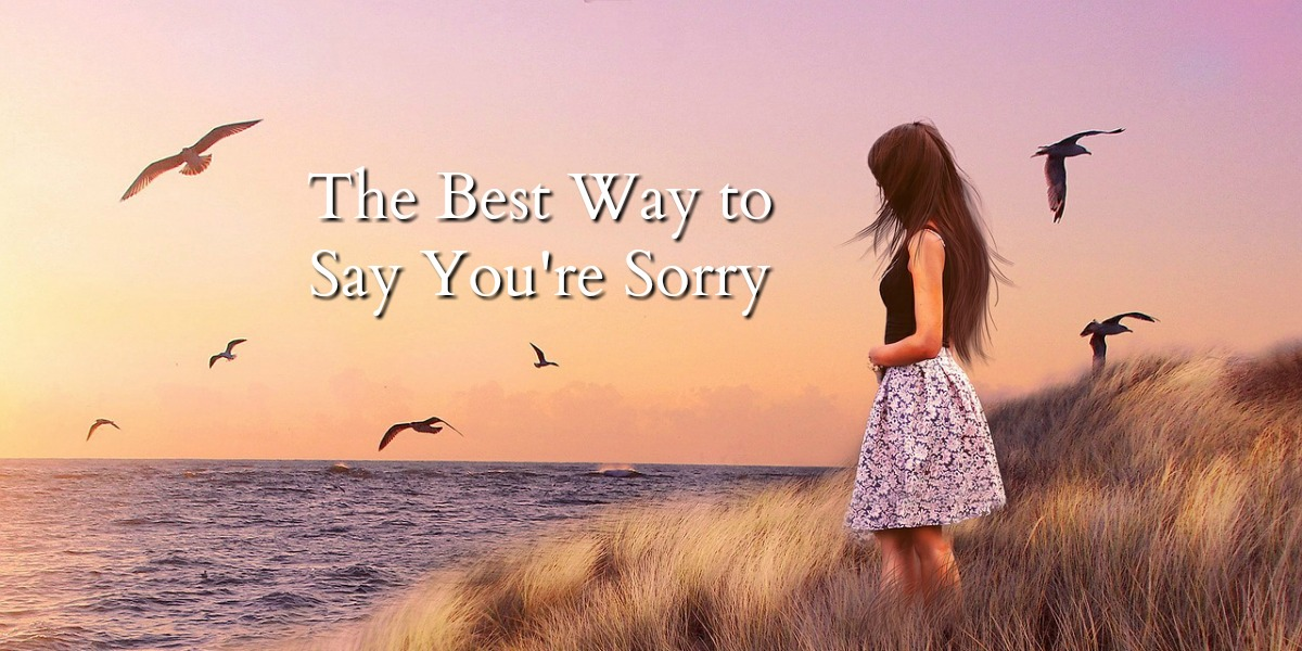 how to say im sorry