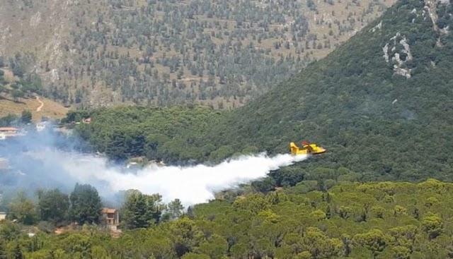 Ricomincia la stagione degli incendi dolosi. - Teleacras.com