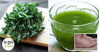 https://steviaven.blogspot.com/2018/04/perejil-un-poderoso-remedio-natural-hinchazon-pies.html