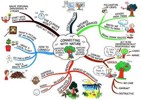 Hướng dẫn sử dụng sơ đồ tư duy để vẽ ước mơ và các kế hoạch kinh doanh