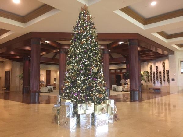 St Regis Christmas Tree Princeville Kauai
