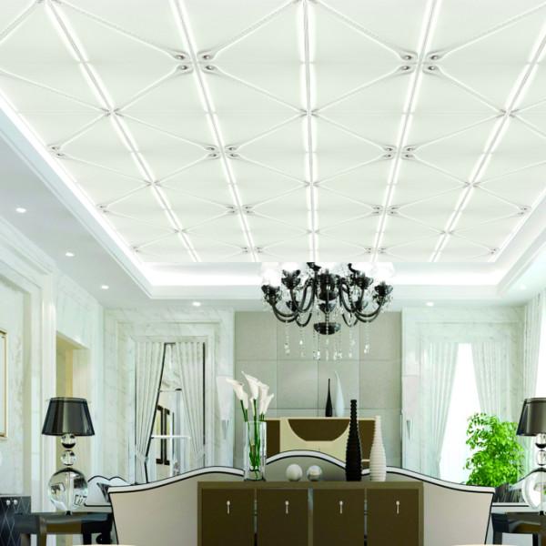 Foundation Dezin & Decor...: 3D Ceiling Designs With 3D