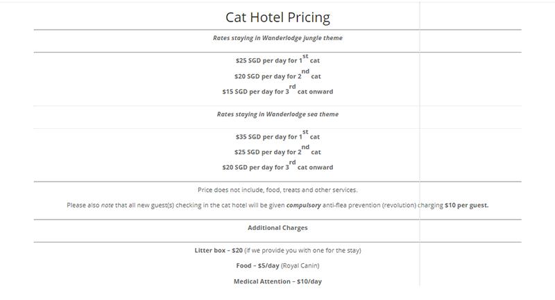 Cat hotels in Singapore