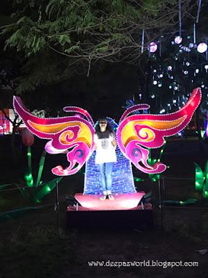 Wings-Dubai-HuesnShades