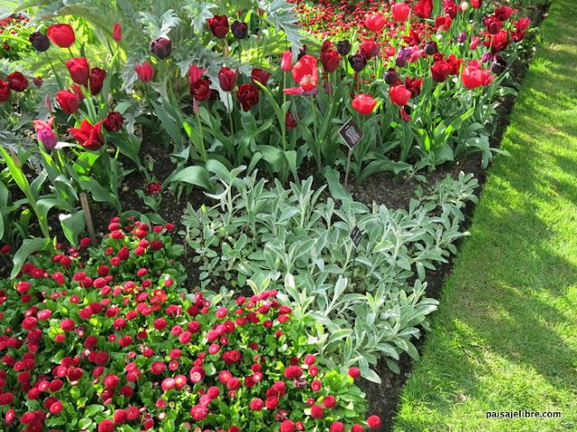 C mo combinar colores en el jard n teor a del color for Jardin 7 colores bernal