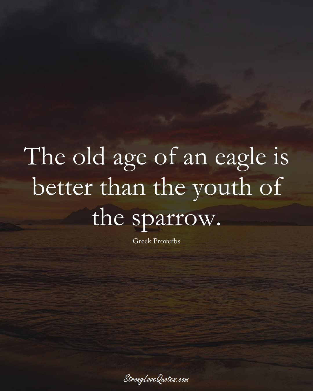 The old age of an eagle is better than the youth of the sparrow. (Greek Sayings);  #EuropeanSayings