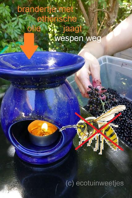 Wespen verjagen met geur