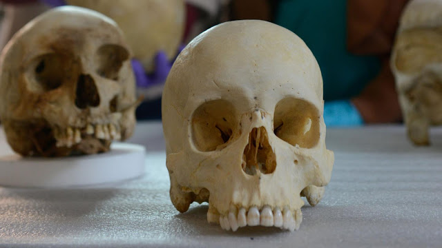 Study highlights need to replace 'ancestry' in forensics with something more accurate