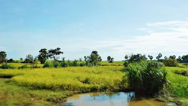 Изображение равнины, Камбоджа