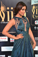 Shriya Saran in Beautiful Transparent Dark Gown IIFA Utsavam Awards 2017 050.JPG