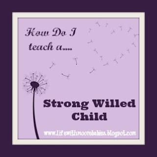 How Do I Teach a Strong Willed Child (Part 1-Defining)