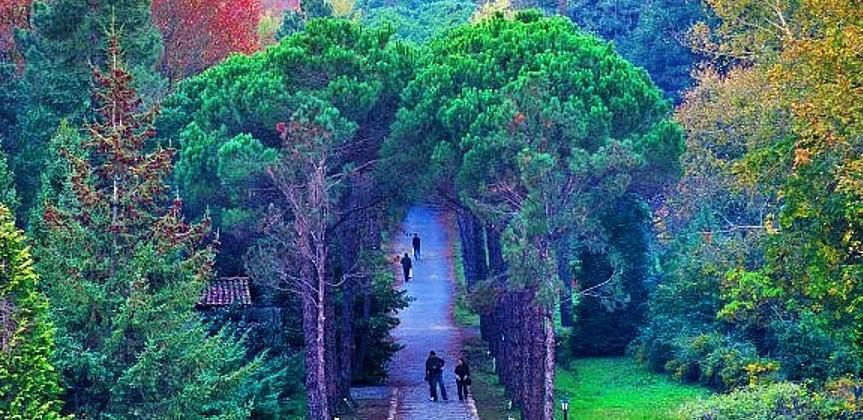 istanbul'da gezilecek yerler atatürk arboretumu