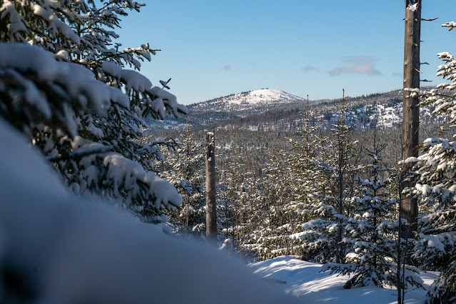 Winterwandern Mauth-Finsterau  Reschbachklause – Siebensteinkopf  Nationalpark Bayerischer Wald 14