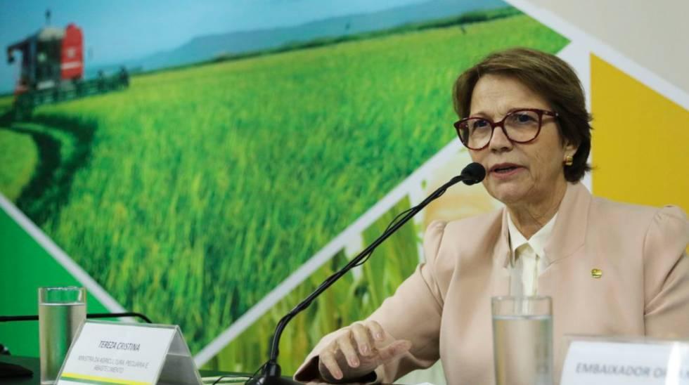 Um Brasil envenenado: a realidade dos agrotóxicos em números