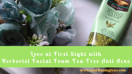 Love at First Sight with Herborist Facial Foam Tea Tree Anti Acne