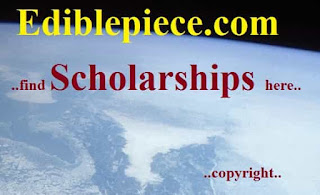 Chongqing Presidents Scholarships