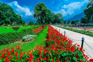 Places to visit in Jammu and kashmir (shalimar bagh mughal garden )